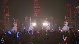 TEAM SHACHI「DREAMER」Live Music Video