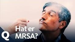 MRSA, das Experiment: Wir testen 400 Leute auf den Superkeim | Quarks