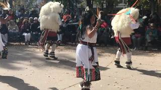 Indigenous Peoples Day Celebration 2017 - Laguna and Hopi Buffalo Dancers Clip 6