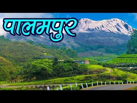 Palampur Tourism, Himachal Pradesh Travel Guide पालमपुर, हिमाचल प्रदेश | Travel Nfx