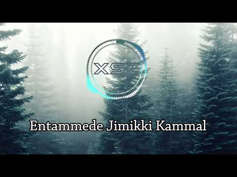 Entammeda jimiki kammal - Vineeth Sreenivasan, Renjith Unni Lyric Video