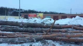 Вырубка леса в п. Краснообск. 12.01.2017г.