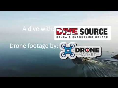 Diving with Dive Source | Diving the PB Locke Sept. 2017