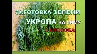 Как заготовить зелень укроп на зиму ЗАМОРОЗКА, СУШКА, ЗАСОЛКА Правильные, проверенные способы.