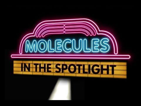 Public Lecture—Molecules in the Spotlight