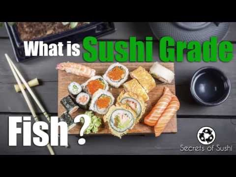 What Is Sushi Grade Fish?