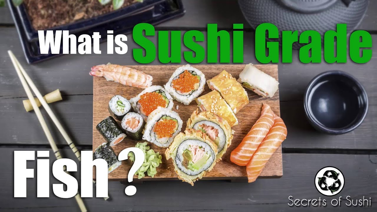 What is sushi grade fish youtube for Buy sushi grade fish online
