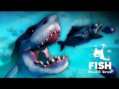 טרף אותי סלמון! - feed and grow: Fish