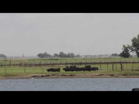 RCR Roadtrip: Part 7 of 10