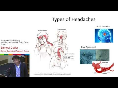 Fantastically Beastly Headaches and How to Cure Them - Zameel Cader