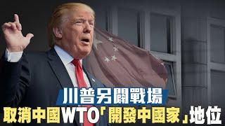 川普另闢戰場 取消中國WTO「開發中國家」地位|八月醞釀大罷工 外媒:港抗爭進入新階段|晚間8點新聞【2019年7月30日】|新唐人亞太電視