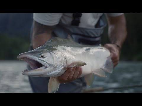 Fishing BC Presents: Swinging Flies For Salmon In Squamish With Chromer Sport Fishing