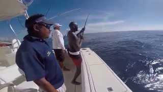 Nel's Cancun Fishing Trip 2015 - Mahi Mahi (dorado)