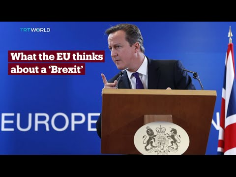 TRT World - World in Focus: What the EU thinks about a