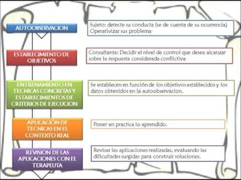 terapia cognitivo conductual ejercicios pdf