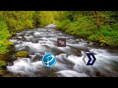 Internet of People, vTorrent and Blocknet are in the flow!
