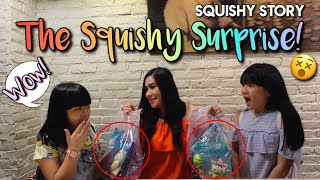 The Squishy Suprise! Squishy Story