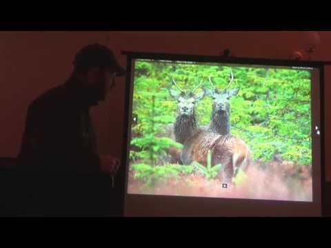 Deer ID DSC1 Deer Stalking Certificate Introduction To UK Deer