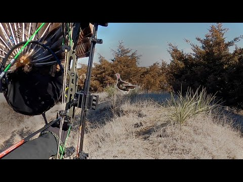 AWESOME TURKEY BOW HUNTING | NO BLIND at 15 yards |