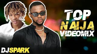 TOP LATEST 2021 NAIJA AFROBEAT VIDEO MIX BY DJ SPARK FT WIZKID/DAVIDO/TEMS/OMAH LAY/BURNA BOY/OLAMID - top 20 afrobeat songs 2020