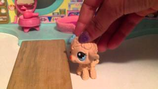 LPS: Amy Speed Dating