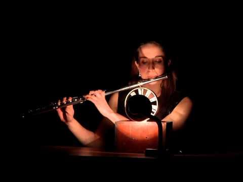 Self Portrait for flute & wind anemometer   Alvin Lucier