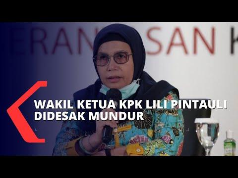 Wakil Ketua KPK Lili Pintauli Hanya Dihukum Potong Gaji, Saut Situmorang: Logika Hukumnya Dimana?
