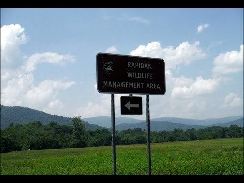 Rapidan River:  Exploring The Rapidan Wildlife Management Area PART ONE