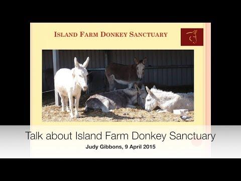Introduction to Island Farm Donkey Sanctuary, 9 April 2015
