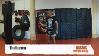 Thaiboxen- Basics-  Kampfhaltung