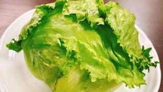 Whole addictive lettuce | Transcription of [Kottaso Recipe] recipe at will