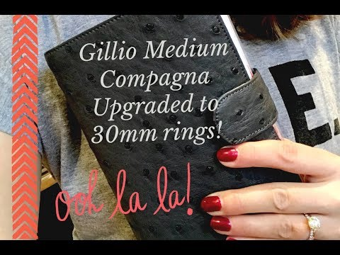 Gillio Compagna Real Ostrich Antracite - Updated Set-up with 30 mm Krause Rings