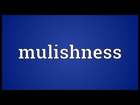 Header of mulishness