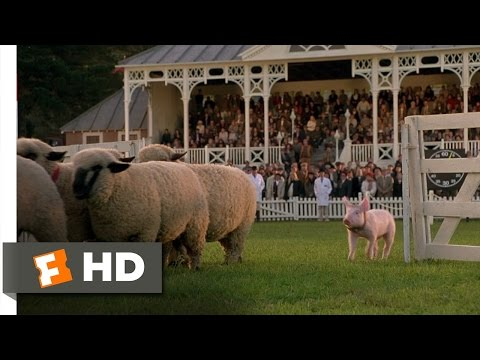 Babe (8/9) Movie CLIP - The Sheep Pig (1995) HD streaming vf