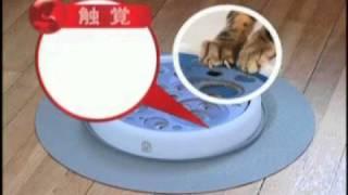日本GEX貓玩具cat it(無限延伸坡度競速場)/寵物益智玩具/貓咪玩/貓用玩具
