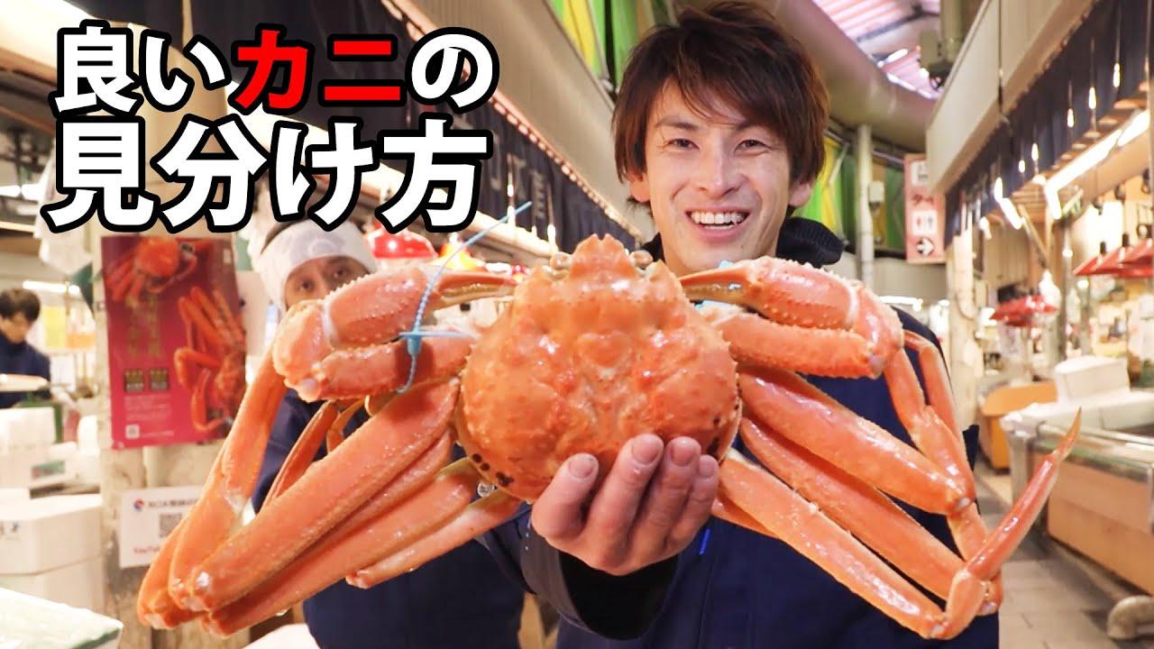 【驚愕】市場のプロが教える美味しい!安い!カニの見分け方(ズワイガニ/ 毛ガニ/香箱ガニ/タラバガニ)