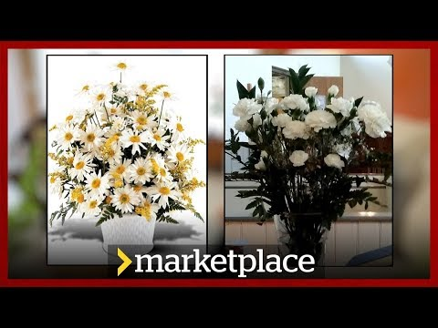 Ordering flowers online: Testing Bloomex (Marketplace)