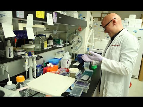 Using Medical Research to Tackle Hepatitis at Stanford