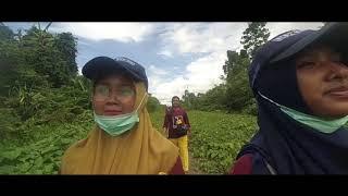 vlog tokok sagu pembuatan papeda oleh tim KKN DIK Sorong UMS tahun 2018