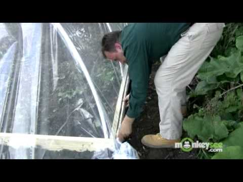 Building a Greenhouse - Installing the Polyethylene Sheeting