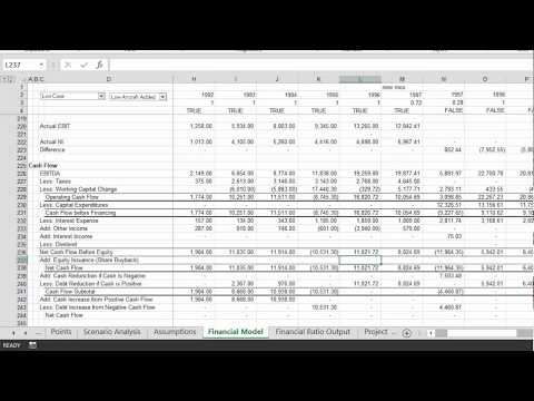 Function for Target Capital Structure in Corporate Model