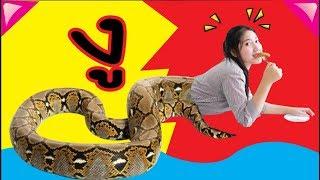 Half a snake 9ความเชื่อโบราณ ในห้องเรียน ห้องเรียนวีคิดสมาย EP 10