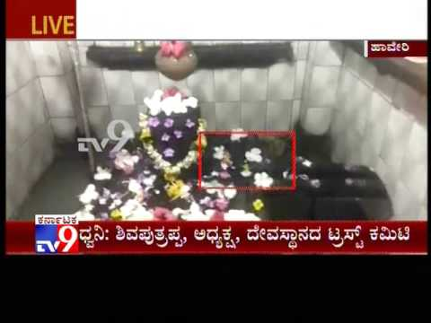 Snake Spotted in Kanavisiddeshwara Temple in Haveri, Residents Throng Temple