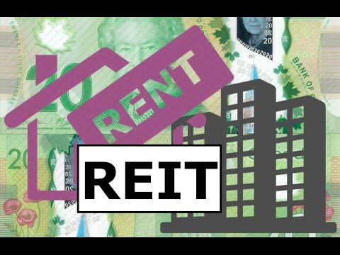 Real Estate Investment Trust (REIT) | Basic Investment Terms #13