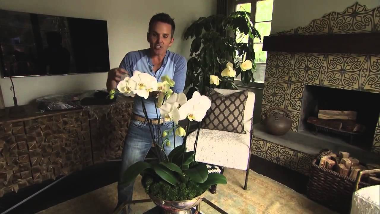 Video: How To Create Orchid Centerpieces