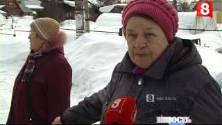 Новосибирск.НОВОСТЬ ДНЯ.Собаки-12.03.2016