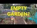 The Empty Winter Veg Garden?