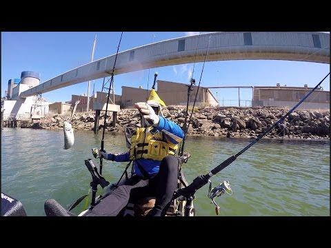 Port River-3.4.17