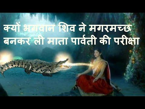 क्यों भगवान शिव ने मगरमच्छ बनकर ली माता पार्वती की परीक्षा !!