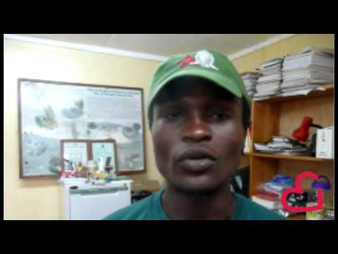 Elvis Muni, Tanzanian Resident And Creator Of Chile To Kili